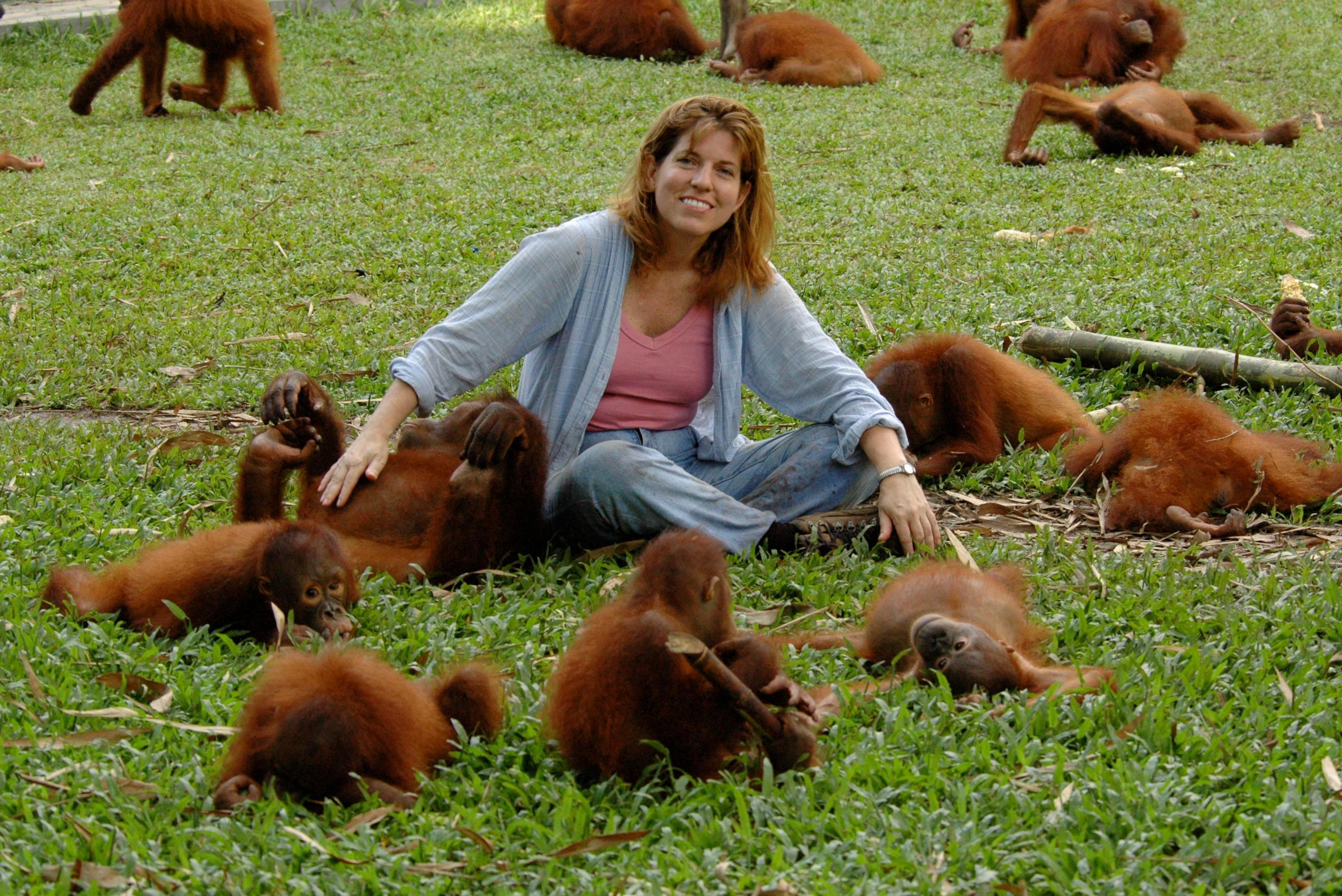 La mentira de los orangutanes